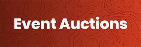 Viewbid Auctions